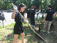 Returning to Cunningham Park: CCIP students volunteer